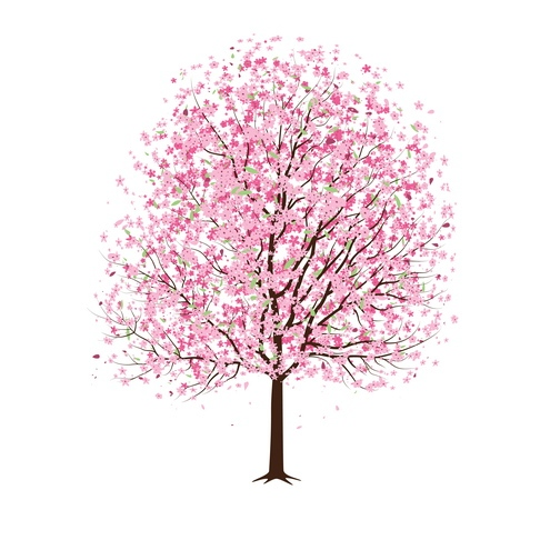 vector-pink-cherry-blossom-tree-02-by-dragonart