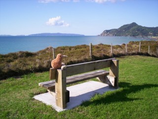 Kiwi on park bench in Kuaotunu, Coromandel Peninsula, NZ