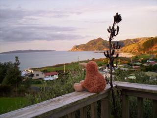Kiwi on bach deck, Kuaotunu, Coromandel, NZ