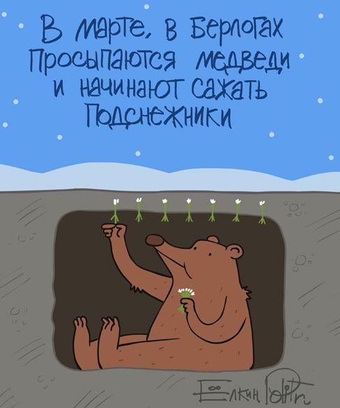 В Марте, в берлогах, просыпаются медведи и начинают сажать подснежники.