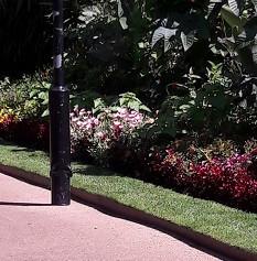 Embankment Gardens2