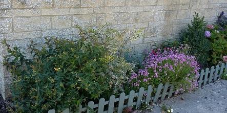 Rob front garden