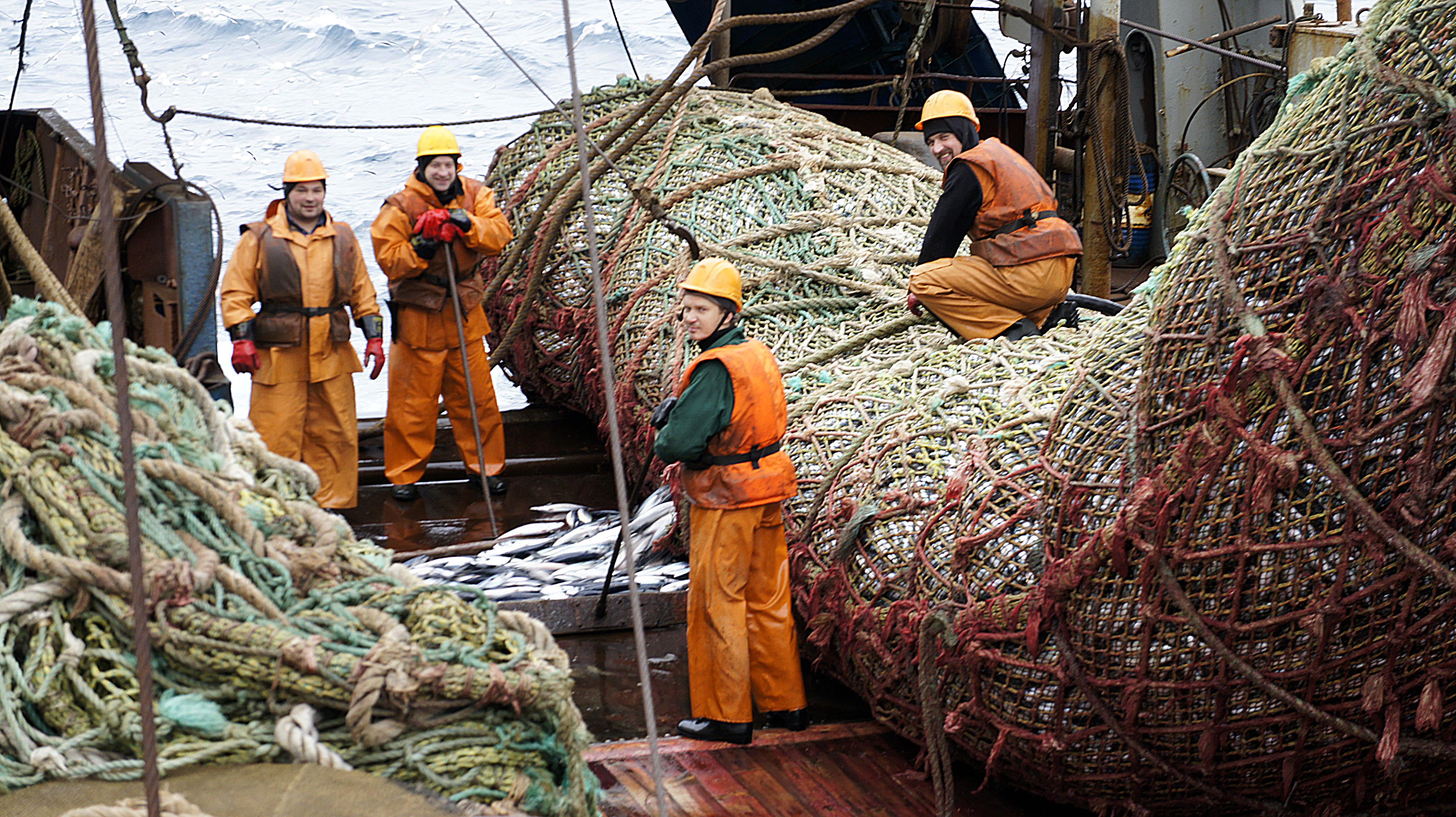 промышленная рыбалка в океане