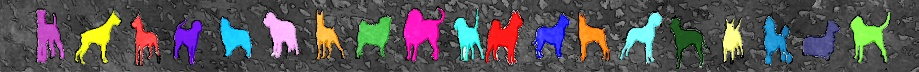 Color silhouettes of a variety of breeds of dog. Digital art by tx_devilorangel