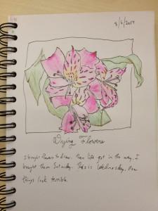 sketchbookskool_8-6-2014
