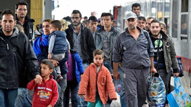 Ищу беженцев