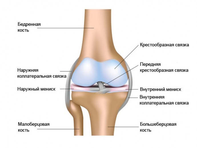 Как вылечить больное колено?
