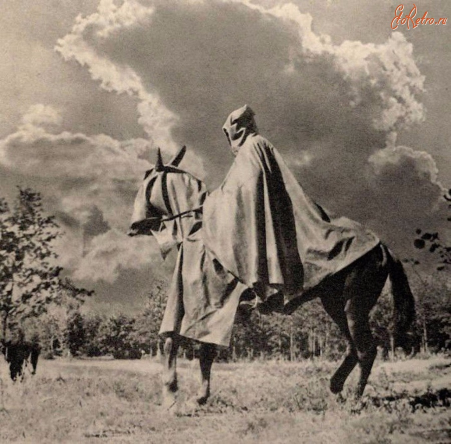 Кавалерист РККА в противоипритной накидке. И лошадь тоже