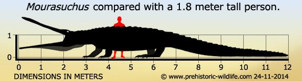 mourasuchus-size