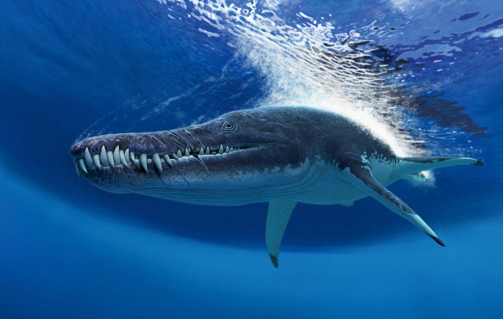 gigantic_pliosaurid_from_volga_region_1_1600