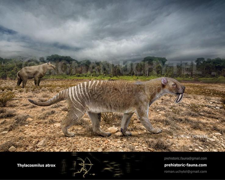Thylacosmilus-atrox-2020-738x591