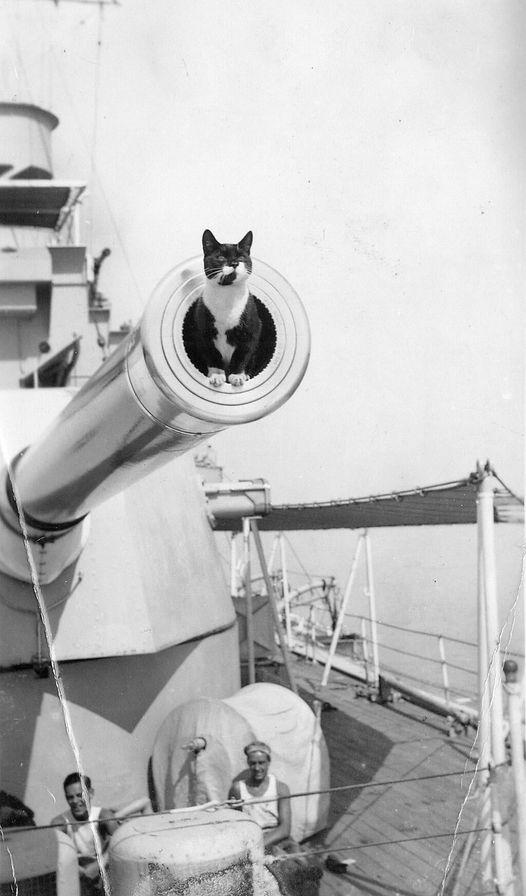 HMS Cornwall, 1933