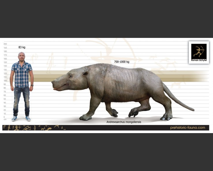 Andrewsarchus-mongoliensis-size-738x591