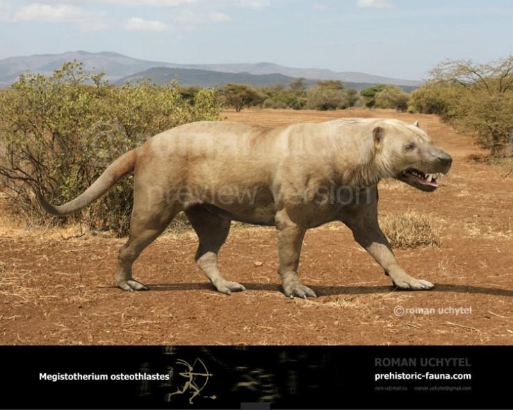 Megistotherium--steothlastes-2016-738x591