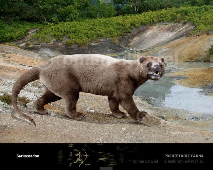 Sarkastodon-mongolia1-738x591