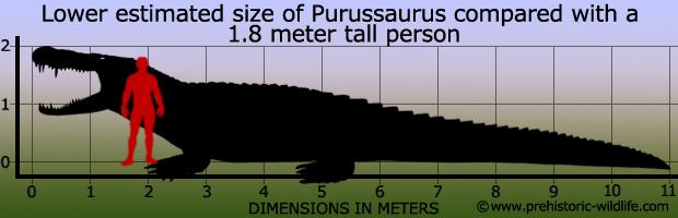 purussaurus-size