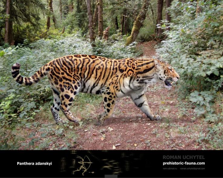 Panthera-zdanskyi1-738x591