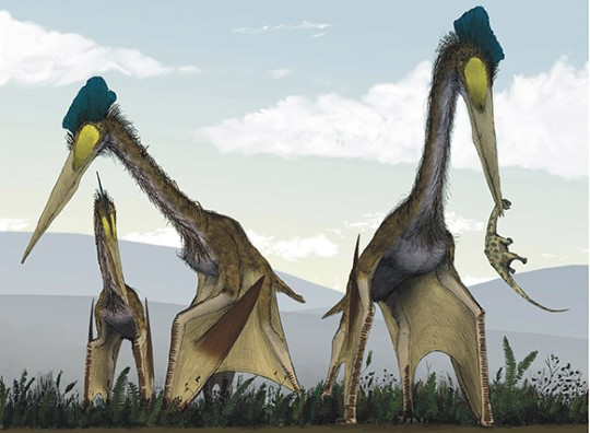 Life_restoration_of_a_group_of_giant_azhdarchids_Quetzalcoatlus_northropi_foraging_on_a_Cretaceous_fern_prairie-1