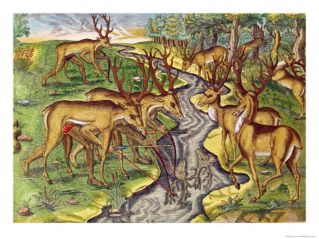 1362529605_9807_jacques-le-moyne-stag-hunt-from-brevis-narratio-engraved-by-theodore-de-bry-1528-98-1563