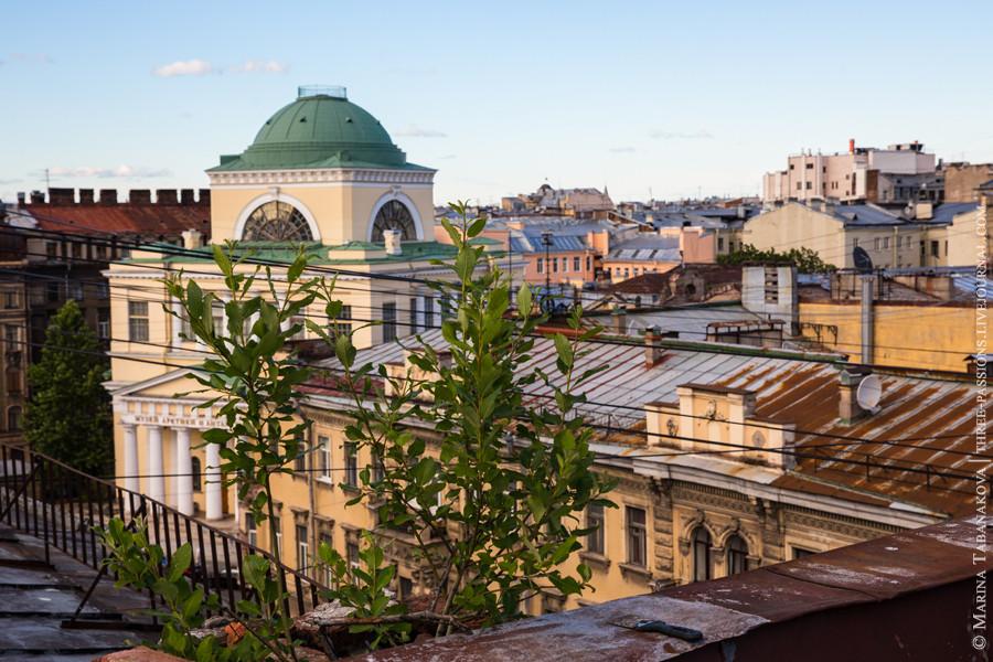20140621-Saint Petersburg-016 web