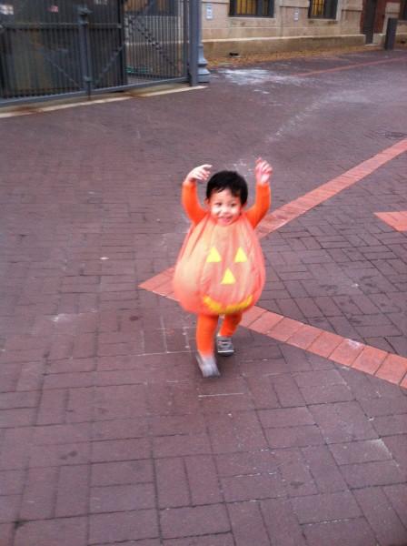 rogue pumpkin