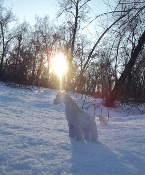 Снежная лошадь2.jpg