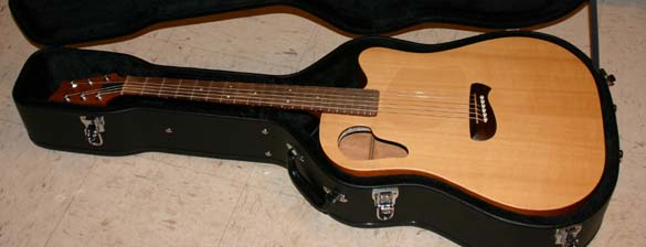 New guitar in case