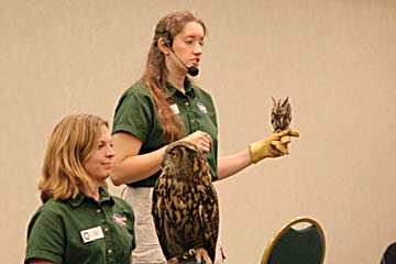 Xena and Twig the Screech Owl for size comparison