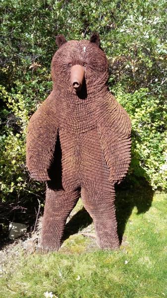 Aspen_hellow_bear_2