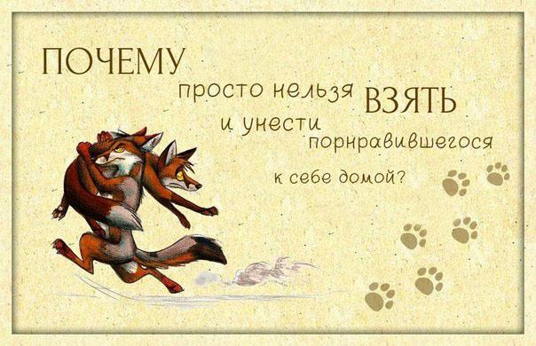 http://ic.pics.livejournal.com/tigris_r/48740465/967/967_original.jpg