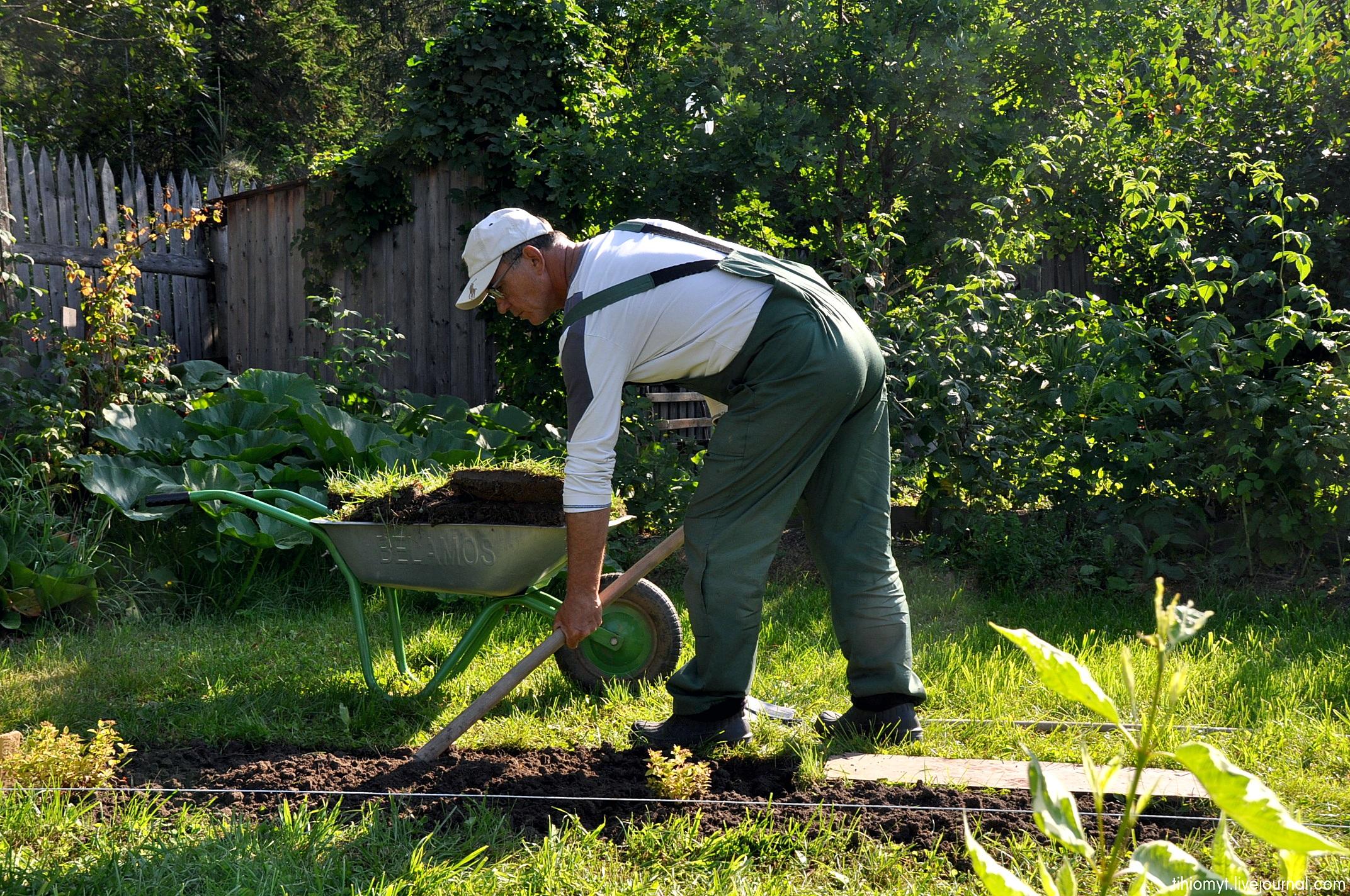 для чего нужны мужики в огороде картинки мягкого