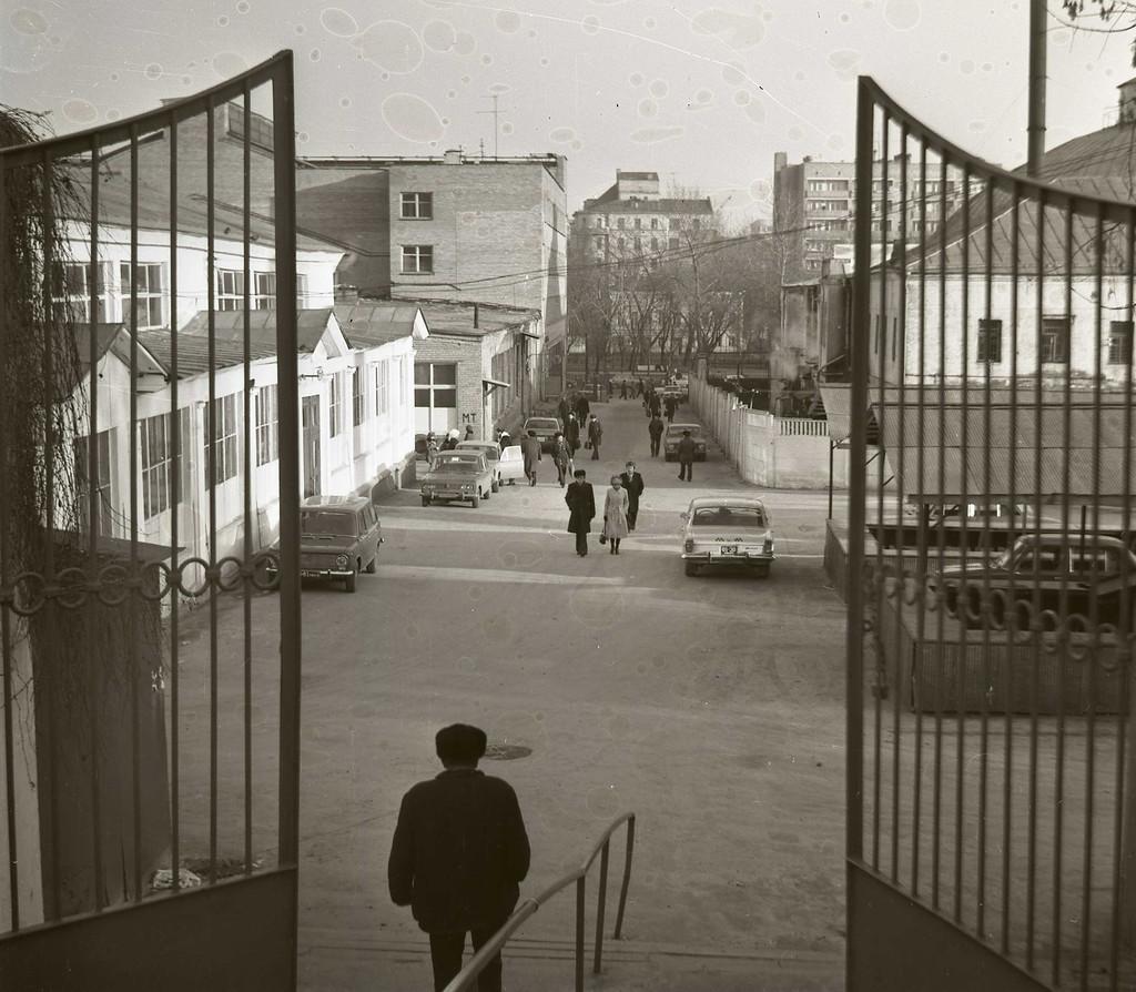 96737 Центральный рынок 1981 г. В. Шульц.jpg