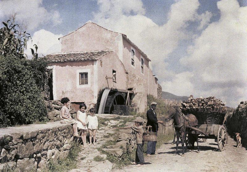 1935 Terceira Azores by Tobien.jpg