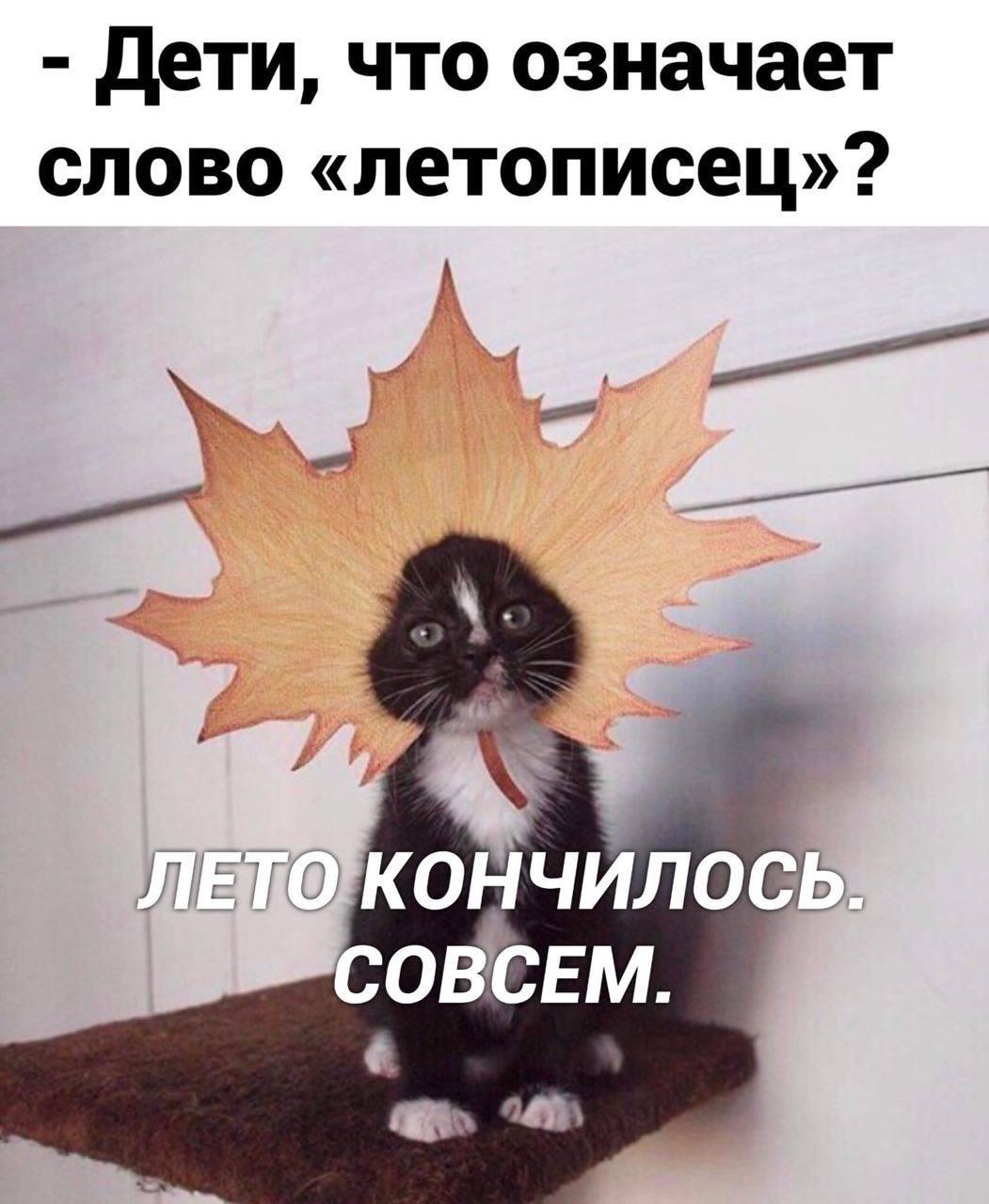 https://ic.pics.livejournal.com/tiina/12725143/26009396/26009396_original.jpg