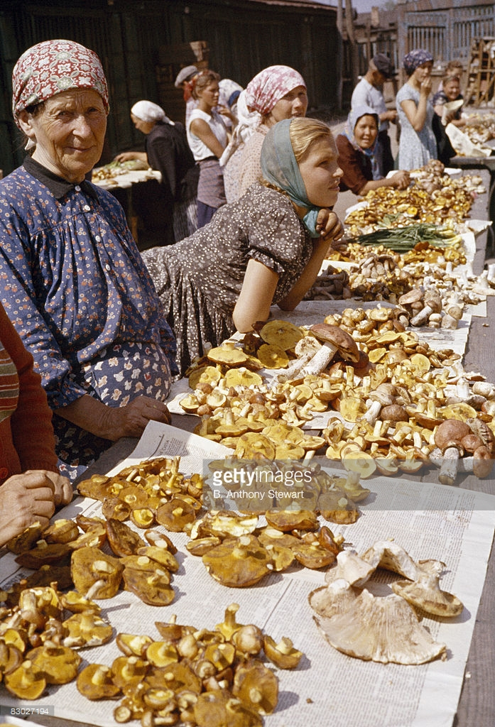 1959 Women young and old sell wild mushrooms at an open-air market, Moscow by B. Anthony Stewart.jpg