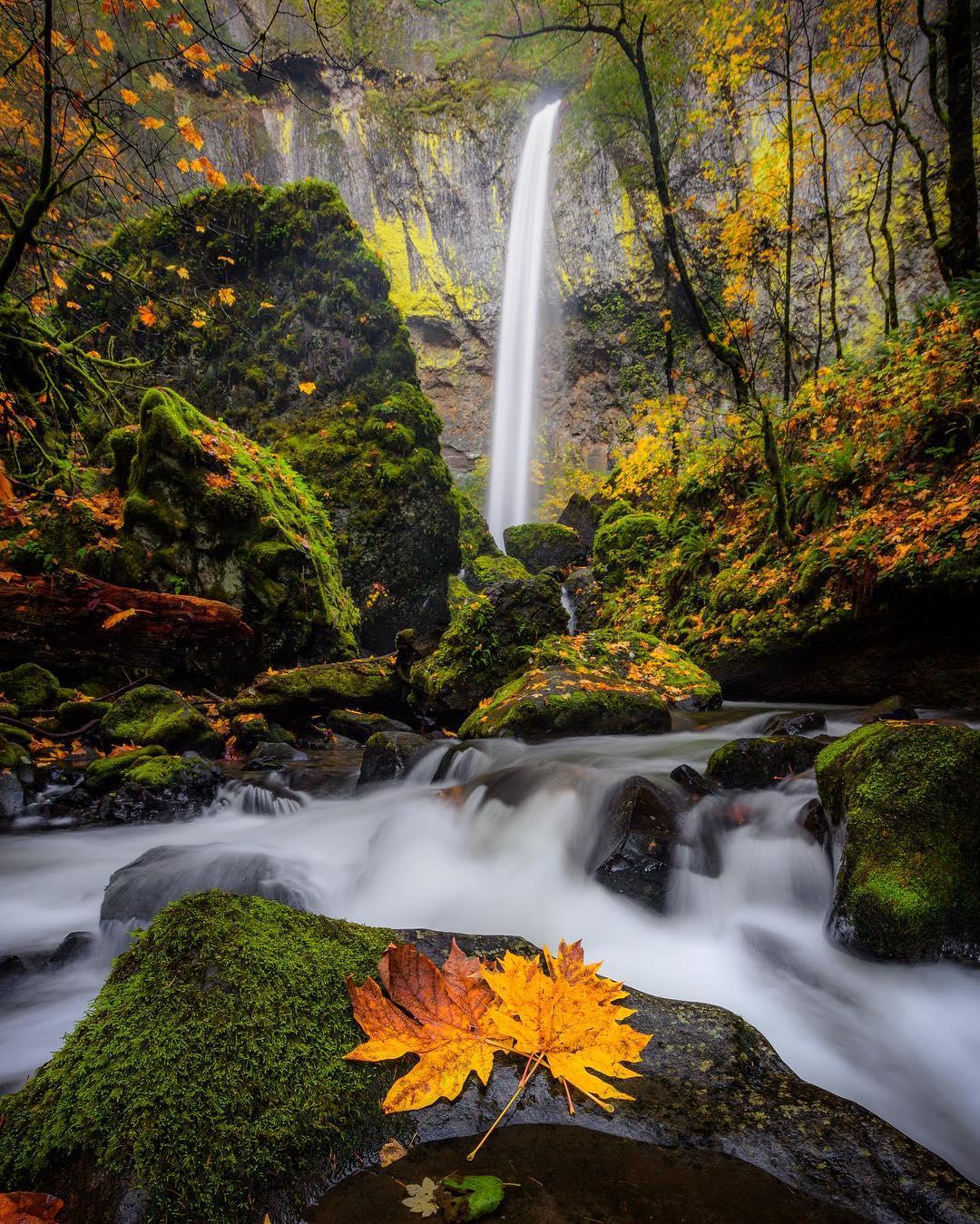 Красивая природа на снимках Росса Липсона