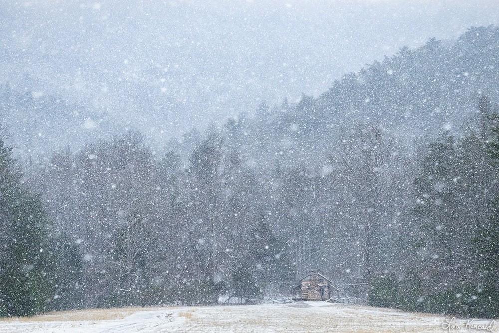 Красивая природа на снимках Лори Кинкейд