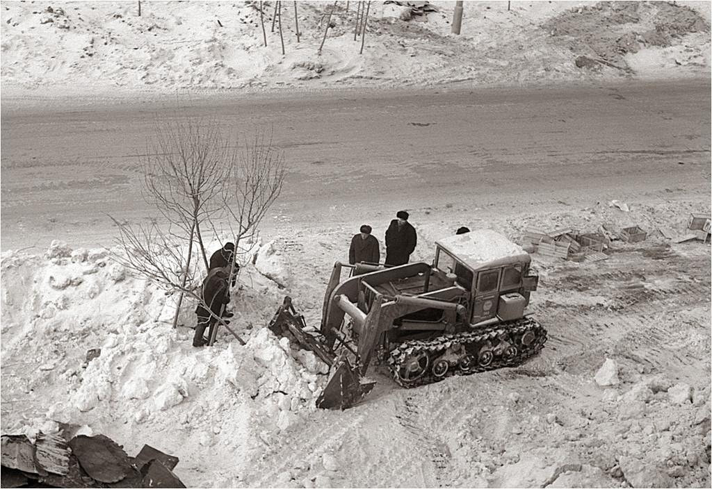 Измайлово. 9-я Парковая улица, дом 66. Зимняя посадка деревьев. 1967.jpg