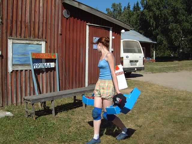 Финляндия 120