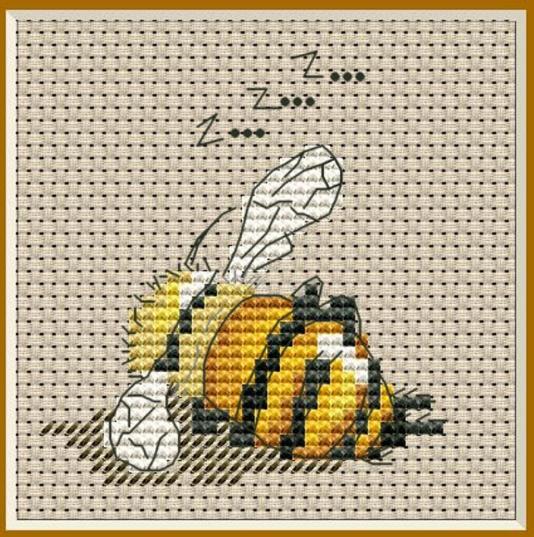 пчеласпит
