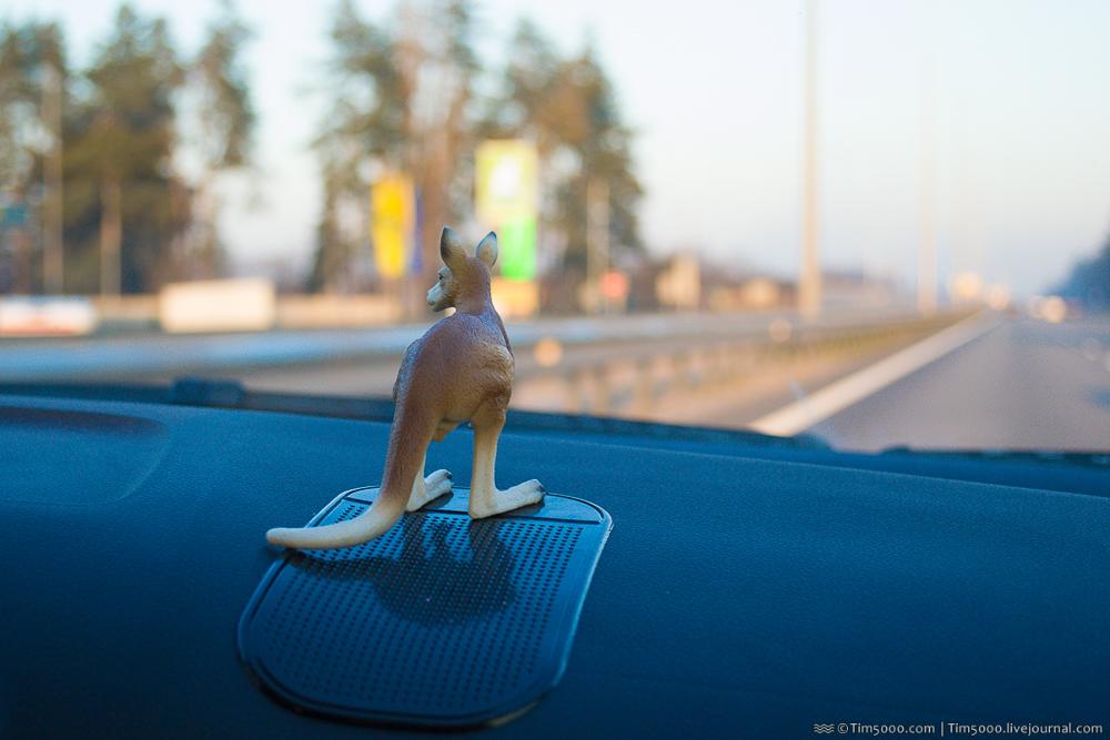 Путешествия на авто