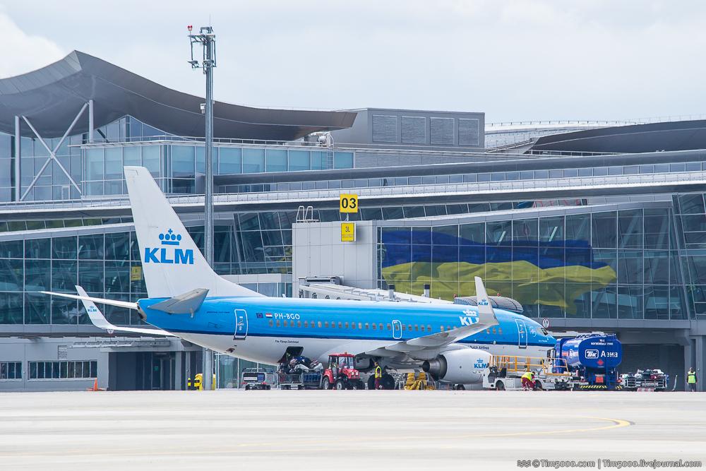 KLM Bird of Paradise