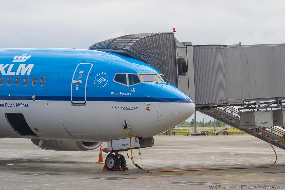 Boeing 737-700 KLM Bird of Paradise