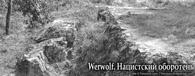 Werwolf. Нацистский оборотень