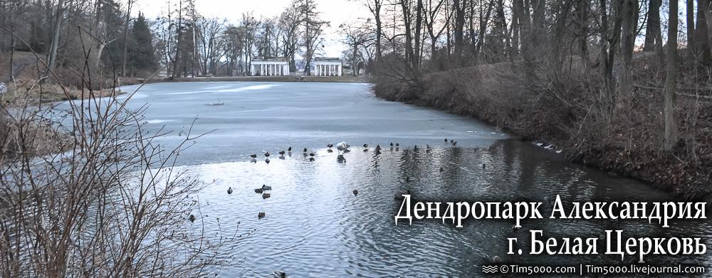 Дендропарк Александрия Зимой