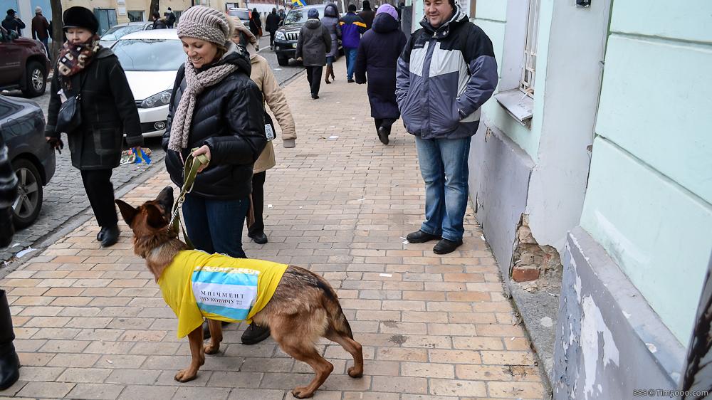 Импичмент Януковичу!