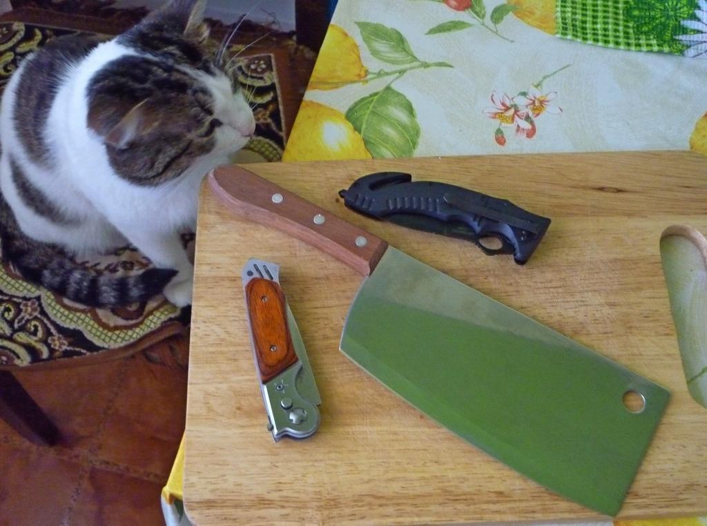 Мурза и ножи