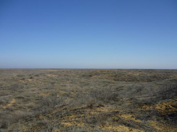 Desert002