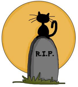 Rip_cat