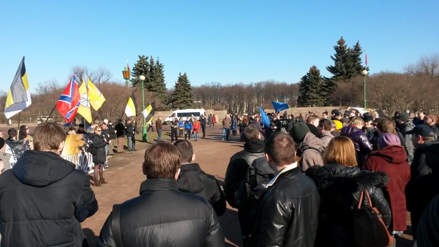 Костычева Дарья говорит, что революции не будет, организатор стоит в толпе спиной